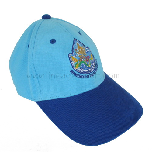 หมวกขายส่ง ตัวอย่างงานทรัพยากรน้ำ
