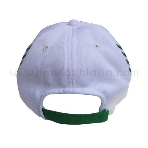 หมวกแก๊ป Biomin